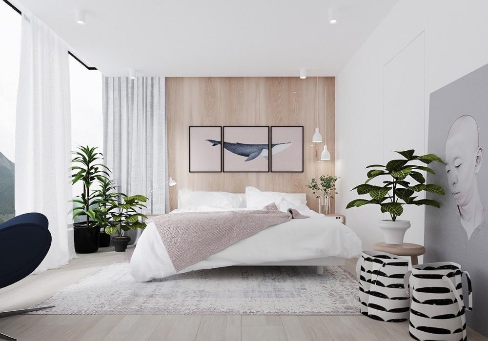 """18 loại cây """"nên và không nên"""" đặt trong phòng ngủ theo phong thủy"""