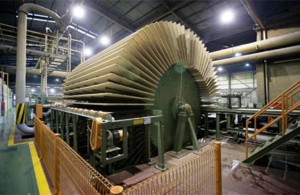 nhà máy chế biến gỗ mdf
